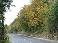 Cone Lane ,Silkstone Common - geograph.org.uk - 496989.jpg