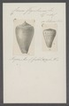 Conus figulinus - - Print - Iconographia Zoologica - Special Collections University of Amsterdam - UBAINV0274 086 03 0017.tif