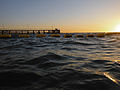 Coogee Beach gnangarra-209.jpg