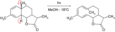Electrocyclic reaction step in 1963 Corey synthesis of Dihydrocostunolide