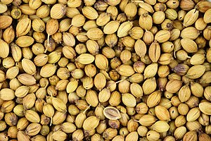 "Coriander - Dried coriander fruits, often called ""coriander seeds"" when used as a spice"