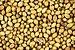 Coriander Seeds.jpg