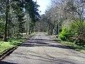 Craibstone Estate - Main Drive - geograph.org.uk - 1192487.jpg