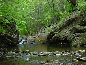 Wissahickon Creek - Cresheim Creek before it meets Wissahickon Creek.
