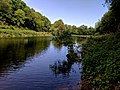 Creswell Gorge, Creswell Craggs, Notts (125).jpg