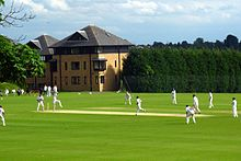 A cricket match in progress, with players in their cricket whites; behind, two modern brick building, three storeys high with dormer windows in the roof; alongside the houses, a hedge running along the side of the pitch, reaching to about the second storey of the houses