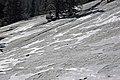 Crusts of glacial polish (Polly Dome, Yosemite National Park, California, USA) 3.jpg