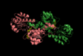 Crystal Structure of Glyoxylate Reductase.png