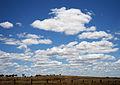Cumulus humilis clouds.jpg