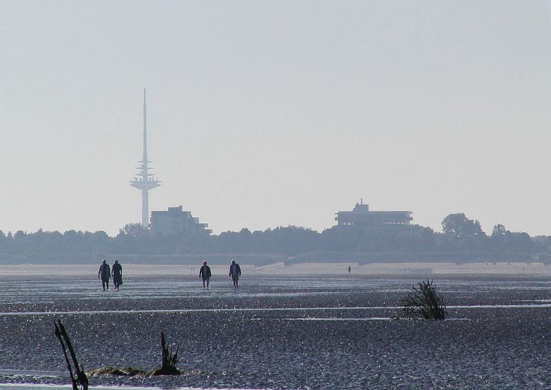 File:Cuxhaven watt 02.jpg