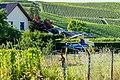 D-HIIX, AS350 B2 Ecureuil zu Schwéidsbeng-100.jpg