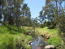 Darebin Creek.JPG