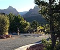 Deer Gathering in Uptown, Sedona, Arizona.jpg