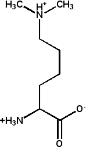 Methyllysine