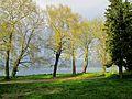Dojran Lake 108.JPG