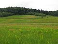 Dolina Wodącej, widok spod Skał Zegarowych.jpg