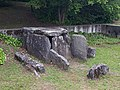 Dolmen du Plant de Rives (side).jpg