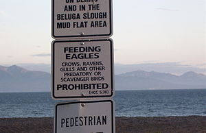Jean Keene - Signs like this are now posted on Homer beaches