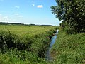 Drainage ditch on marshes - geograph.org.uk - 543977.jpg