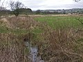 Drained fields neared Brynhope - geograph.org.uk - 644861.jpg
