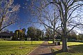 Dubbo NSW 2830, Australia - panoramio (27).jpg