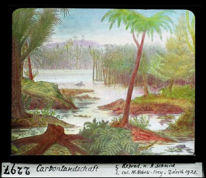 ETH-BIB-Carbonlandschaft-Dia 247-02297
