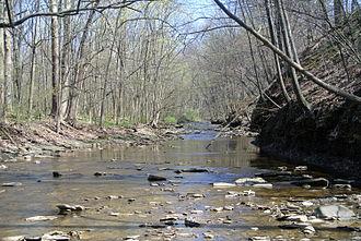 Black River (Ohio) - East Fork of the Black River flowing through Lodi, Ohio.