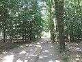 Ede - 2013 - panoramio (18).jpg