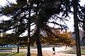 Ellenfény - panoramio.jpg