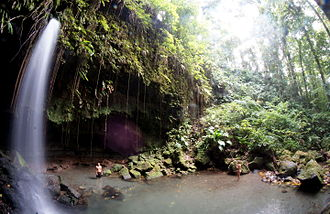 Morne Trois Pitons National Park - Image: Emerald Pool Dominica