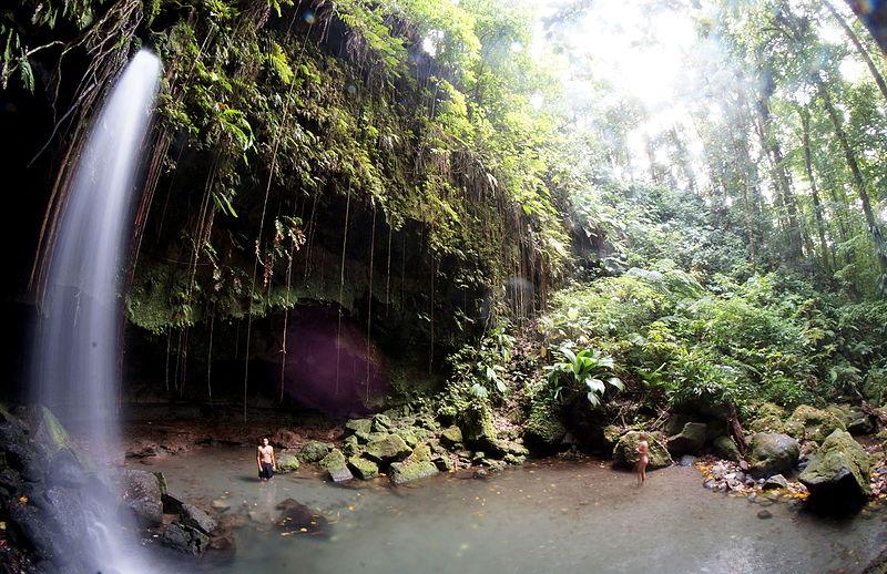 File:Emerald Pool Dominica.JPG