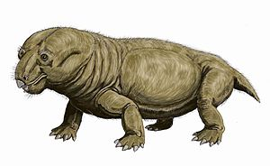 Endothiodon - Restoration of E. bathystoma