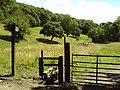 Equestrian Meadows - geograph.org.uk - 889979.jpg