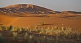Erg Chebbi Sand Dunes (4803940851).jpg