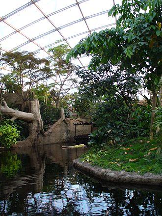 Leipzig Zoological Garden - Inside Gondwanaland