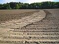 Erosion Mulden010.jpg