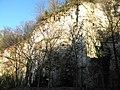 Ex cava Spinazzola, formazione rocciosa (Rovolon) 01.jpg