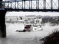 Excursion vessel Majestic on the Ohio River -b.jpg