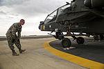 Exercise Iron Hawk 14 in Saudi Arabia 140415-A-AR422-086.jpg