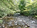Exmoor , The River Barle - geograph.org.uk - 1494269.jpg