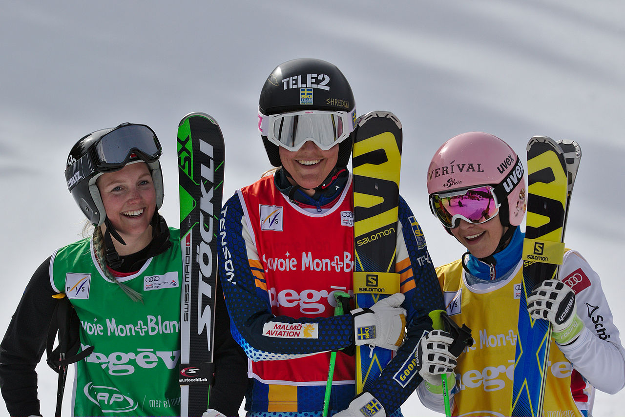 Image Result For Fis Ski