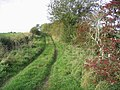 Farm Track - geograph.org.uk - 270041.jpg