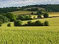 Farmland, Bledlow - geograph.org.uk - 887415.jpg