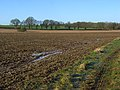 Farmland, Burghfield - geograph.org.uk - 1203517.jpg