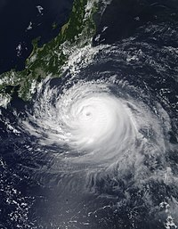 台風第15号(9月8日)
