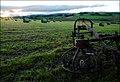 Field behind Bourock - geograph.org.uk - 535346.jpg