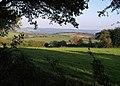 Field beside bridleway - geograph.org.uk - 580465.jpg
