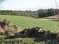 Field near Holwell - geograph.org.uk - 1747728.jpg