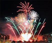 fireworks in jan croppedjpg