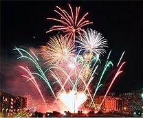 fireworks in jan croppedjpg